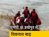 Video : मध्य प्रदेश के बाढ़ग्रस्त इलाकों में सैकड़ों जिंदगियां बचाने का काम कर रही एसडीआरएफ टीम