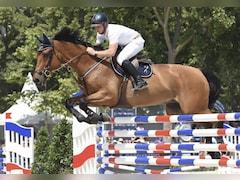 Tokyo Olympics: Australian Equestrian Tests Positive For Cocaine, Suspended From Olympics