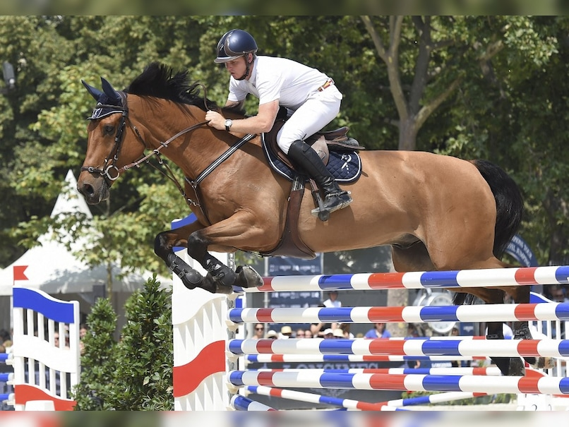 Tokyo Olympics: Positive Australian Horse Tests for Cocaine Suspended from Olympics