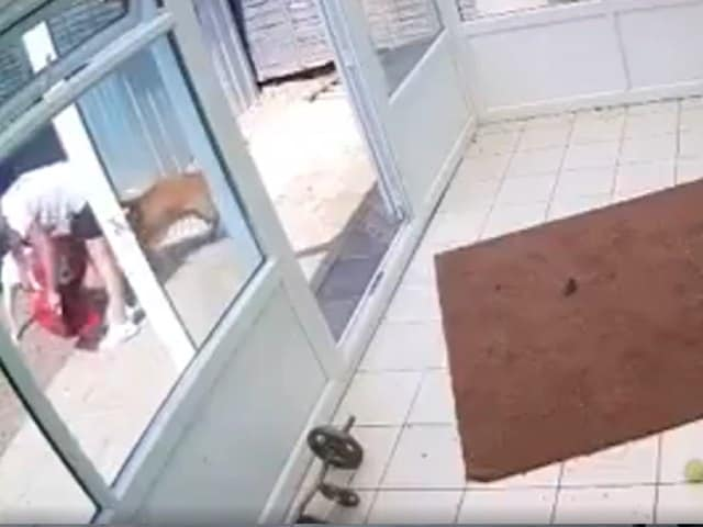 Videos : कुत्ते ने खाना खाने वाले बर्तन के होल्डर में फंसा ली गर्दन