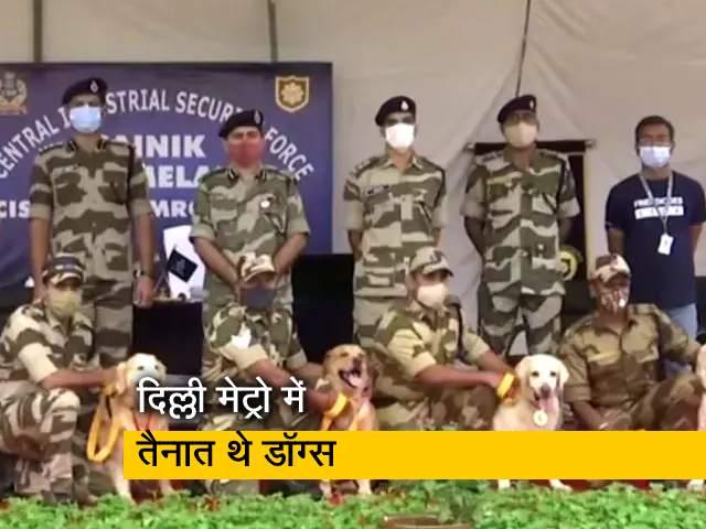 Videos : DMRC में तैनात CISF के 7 स्निफर डॉग्स 10 साल की सर्विस के बाद रिटायर