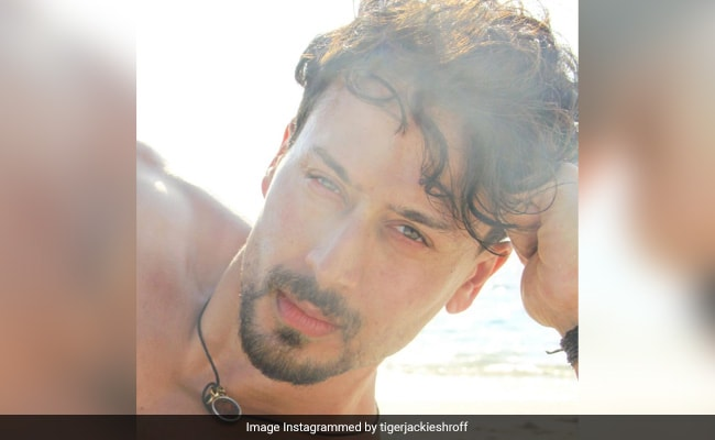 Ayesha Shroff Is A Proud Mom In Her Comment On Tiger's Baaghi Throwback