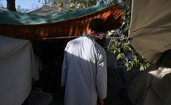 On Frontline Of Fear, Afghan Teen Forced To Ferry Arms For Taliban