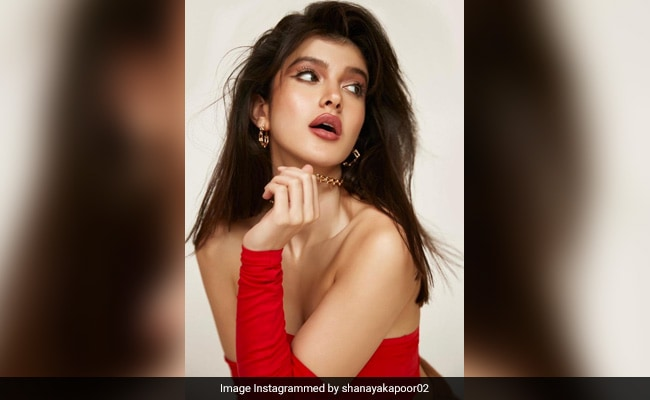What's More Dramatic, Shanaya Kapoor's New Pic Or Its Caption? We Can't Decide