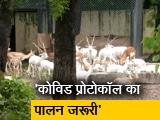 Video : 105 दिन बाद दिल्ली का चिड़िया घर ऑनलाइन टिकट सुविधा के साथ 2 पालियों में फिर खुला