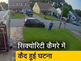 Video: VIDEO: आसमान से 'टपकी' मछली, कार पर गिरी; कैमरे में कैद हुआ वाकया
