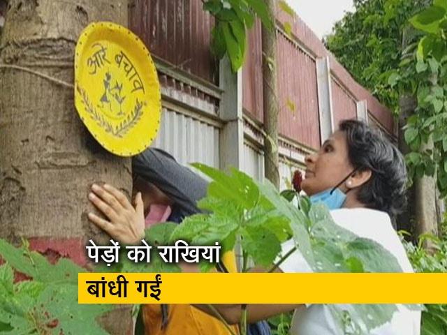 Video : मुंबई के आरे के जंगल में 'वृक्षाबंधन' के जरिए नेताओं को उनके वादे याद दिलाए गए