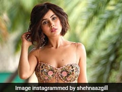 Brace Yourselves As Shehnaaz Gill Is All Set To Kill With Her Spunky Style