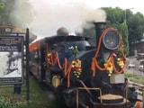 Video : सिलीगुड़ी और रोंगटोंग के बीच शुरू की गई 'जंगल टी टॉय ट्रेन सफारी'