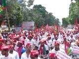 Video : Akhilesh Yadav Leads Cycle Yatra In Lucknow
