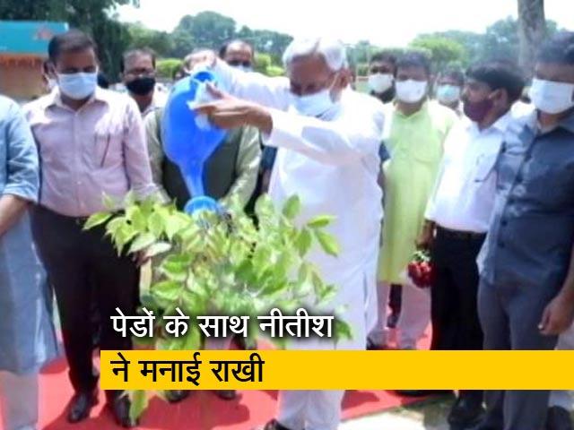 Video : रक्षा बंधन पर बिहार के CM नीतीश कुमार ने पेड़ को बांधी राखी