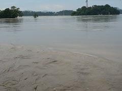 24 Endangered Animals Killed In Kaziranga National Park Amid Assam Floods