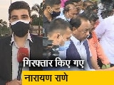 Videos : देश प्रदेश: केंद्रीय मंत्री नारायण राणे गिरफ्तार, विवादास्पद बयान को लेकर ऐक्शन