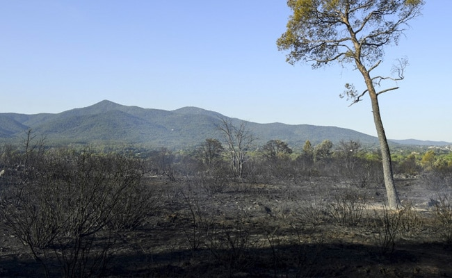 Thousands Evacuated In Southern France As 'Fierce' Wildfire Spread