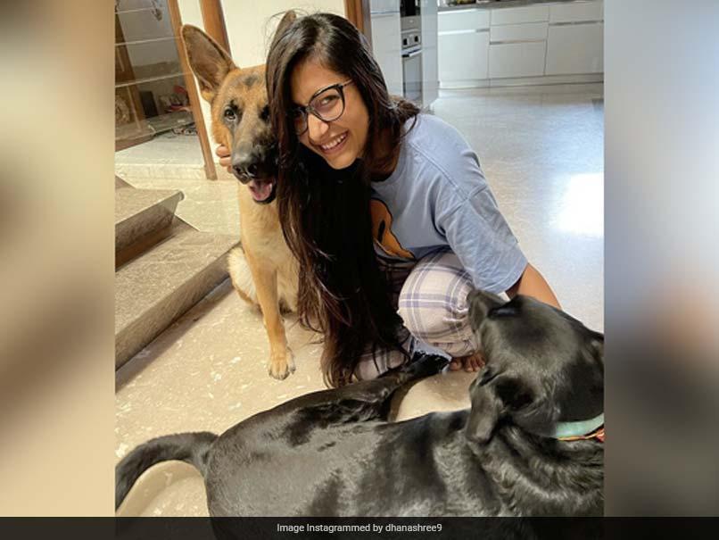 Dhanashree Vermas Raksha Bandhan Post Features Scotty And Groot. Yuzvendra Chahal Reacts