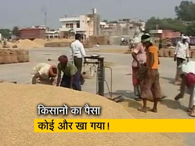 Video : रवीश कुमार का प्राइम टाइम: रामपुर में न्यूनतम समर्थन मूल्य पर गेहूं खरीद में धांधली