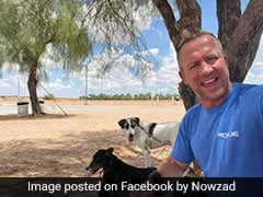 British Ex-Marine Escapes Kabul With 150 Cats And Dogs