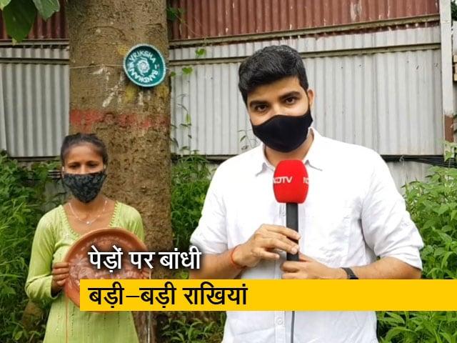 Video : मुंबई के आरे जंगल में रक्षा बंधन पर मनाया गया 'वृक्ष बंधन', बता रहे हैं सोहित मिश्रा
