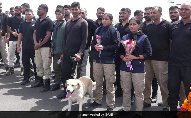 New Task For Roobi, Maya, Bobby - Dogs Who Guarded India's Kabul Embassy