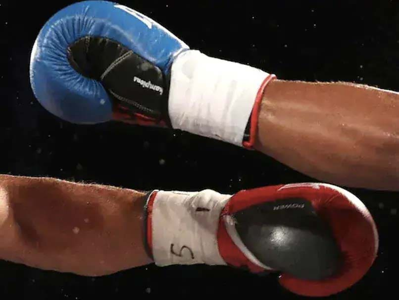 World Boxing Council Announces Formation Of India Committee