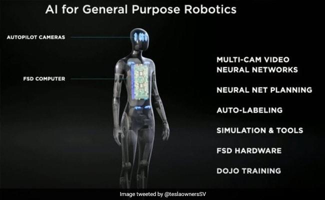 Elon Musk Says Tesla Will Launch Prototype Of Humanoid Robot Next Year