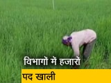 Video : रवीश कुमार का प्राइम टाइम : किसान कल्याण, कृषि विकास विभाग में हजारों पद खाली; 1990 से नहीं हुई कोई नियुक्ति
