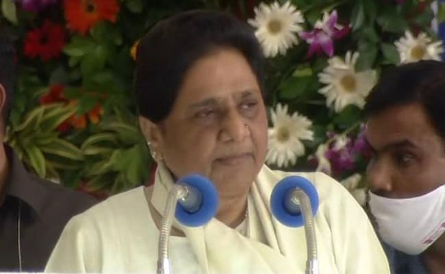 Mayawati's Swipe At BJP Over UP Polls: 'Ignored Farmers For 4.5 Years...'