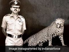 In Indian Air Force's Tribute To Outgoing Chief, A Tale Of 2 Sorties