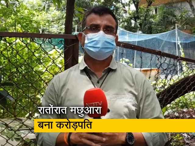 Videos : महाराष्ट्र के पालघर का मछुआरा बना रातोंरात करोड़पति, 1 करोड़ 33 लाख रुपये की लगी बोली
