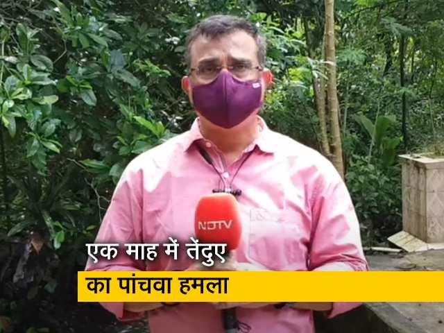 Videos : बुजुर्ग महिला ने तेंदुए का दिलेरी से किया मुकाबला और उसे भगा दिया, बता रहे हैं सुनील सिंह