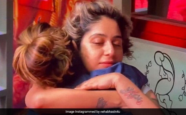 Bigg Boss OTT: 'Gained Friends Like Family,' Writes Neha Bhasin After Eviction. The Friends Are...