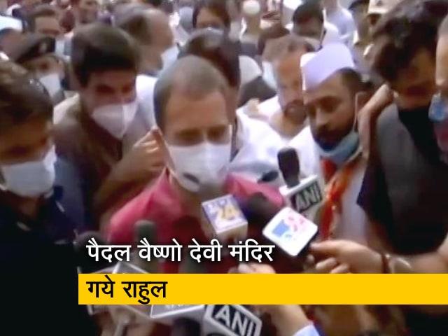 Videos : दो दिन के जम्मू दौरे पर हैं राहुल गांधी, पैदल वैष्णो देवी के दरबार में पहुंचे