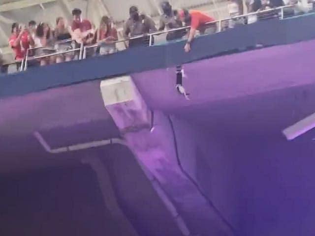 Video : Stadium Goers Catch Falling Cat In Viral Video