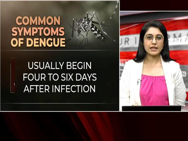 Video : Staying Safe From Dengue: Dos And Don'ts