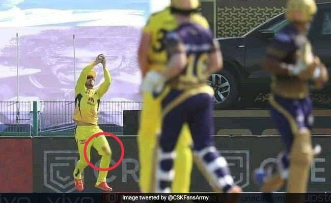 IPL 2021: घुटने में लगी चोट के बावजूद डु प्लेसी ने लिया सुपरकैच, देखकर होश उड़ जाएंगे, देखें Video