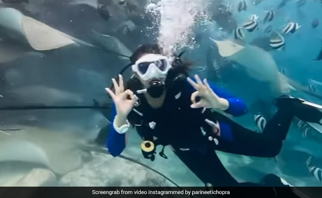Into The Blue With Scuba Fan Parineeti Chopra. See What She Signalled Underwater