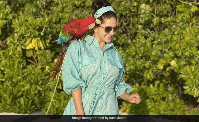 Sunny Leone's New Friend Was Cute 'Until He Decided He Wanted To Take My Glasses'
