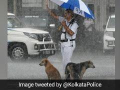 Kolkata Cop Shelters Dogs From Heavy Rain. Viral Pic Wins Hearts