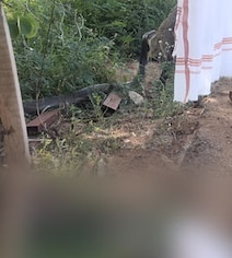 Zoho CEO's Close Encounter With 12-Foot King Cobra In Tamil Nadu Village