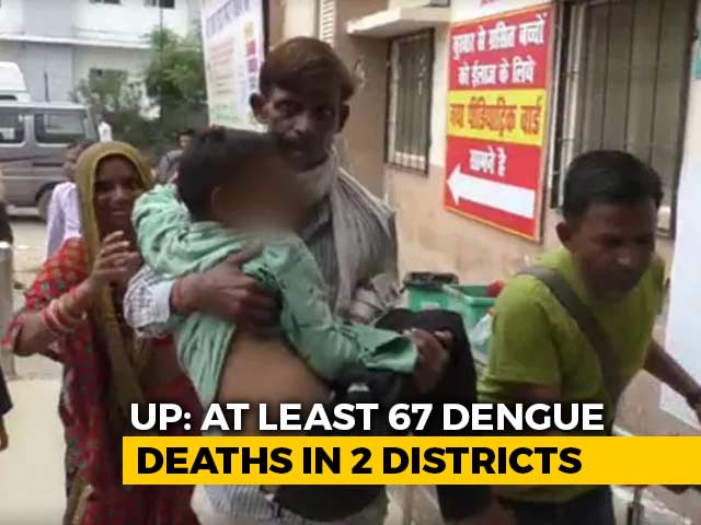 Video : Woman Falls At Doctor's Feet, Desperation In UP District Hit By Dengue