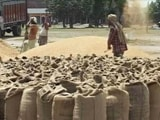 Video : Wheat Purchase Price Up By 2%, Lowest In A Decade, Amid Farmers' Protest