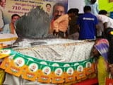 Video : 710 Kg Fish Given For Free In Chennai To Mark PM Modi's 71st Birthday