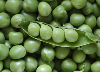 Are Your Green Peas Sprayed With Artificial Colour? Find Out Here