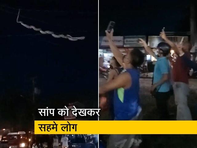 Video : VIDEO: सिर के ऊपर से जा रहे तार पर लटक रहा था बड़ा-सा सांप, देखकर निकल गई लोगों की चीख