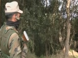 Video : Snipers, Drones, Sharpshooters Deployed Ahead Of Amit Shah's 3-Day J&K Visit