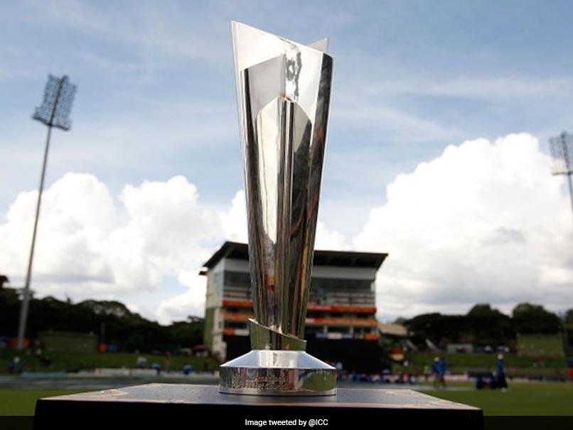 4cvsg47g t20 world cup trophy Sports