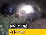 Video : मयूरभंज में आधी रात को हाथी को गड्ढे से निकाला गया