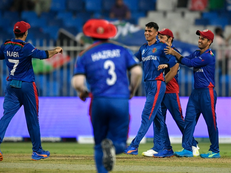 T20 World Cup: Clinical Afghanistan Rout Scotland By 130 Runs