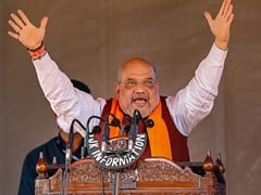 PM Modi's Personal Efforts Led To Revocation Of Article 370: Amit Shah