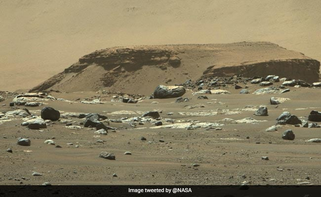 NASA's Rover Images Show Existence Of Ancient River Delta On Mars